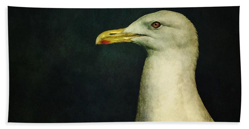 Seagull Bath Towel featuring the photograph Naujaq by Priska Wettstein