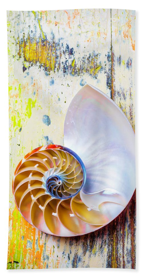Chambered Nautilus Hand Towel featuring the photograph Nautilus Shell On Old Board by Garry Gay