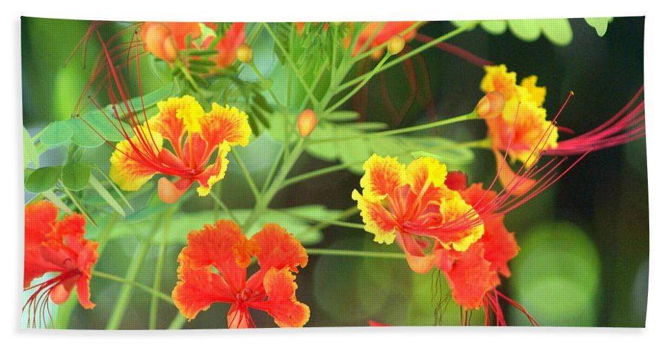 Hand Towel featuring the photograph Nectar by Todd Hummel