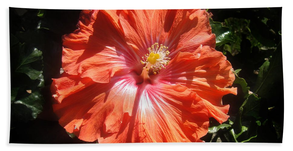 Hibiscus Bath Sheet featuring the photograph Neon-red Hibiscus 6-17 by Sofia Metal Queen