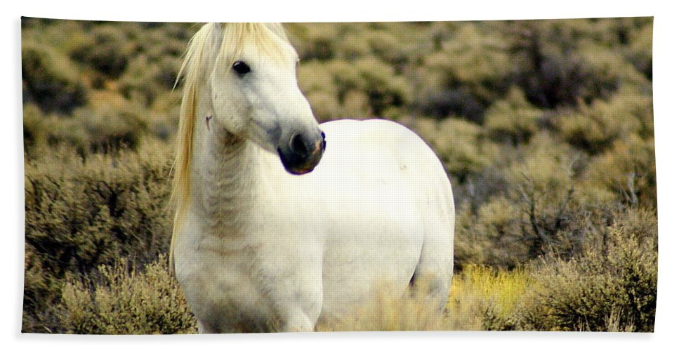 Horses Hand Towel featuring the photograph Nevada Wild Horses 3 by Marty Koch
