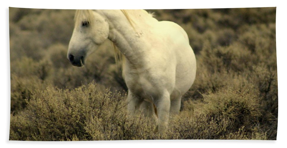 Wild Horses Hand Towel featuring the photograph Nevada Wild Horses 4 by Marty Koch
