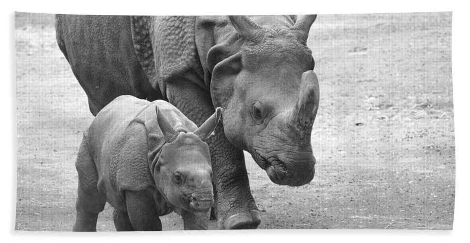 Rhino Bath Sheet featuring the photograph New Born Rhino And Mom by Jennifer Craft