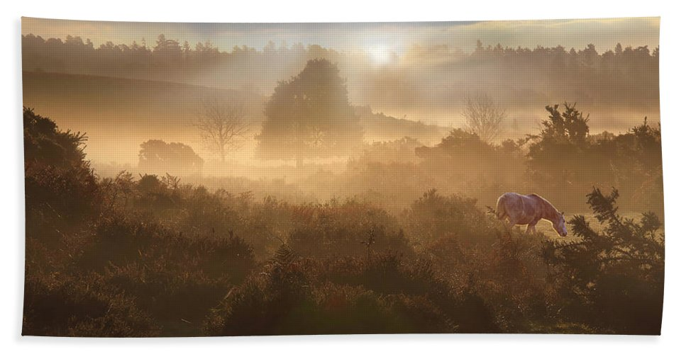 New Bath Sheet featuring the photograph New Forest Dawn by Ceri Jones