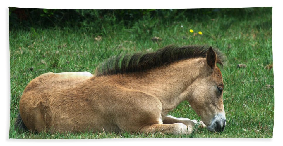 New Forest Bath Sheet featuring the photograph New Forest Pony by Chris Day