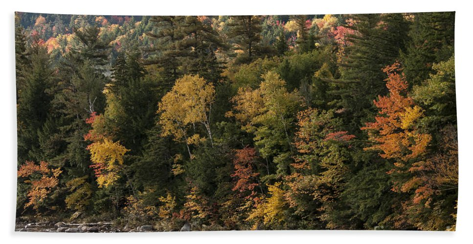 Albany New Hampshire Swift River Rivers Stone Stones Rock Rocks Water Fall Foliage Autumn Colors Color Leaf Leaves Tree Trees Landscape Landscapes Bath Sheet featuring the photograph New Hampshire Color Along The Swift River by Bob Phillips
