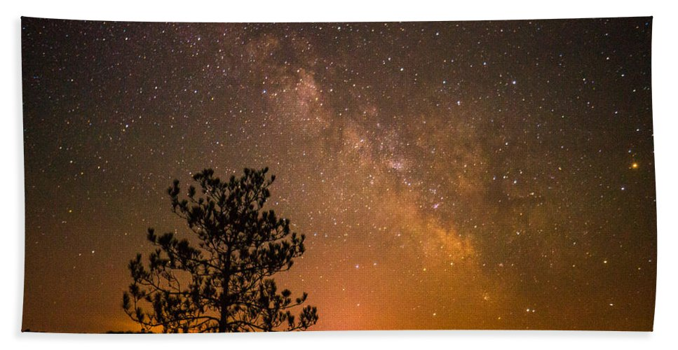Night Bath Sheet featuring the photograph Night Companions by LuAnn Griffin