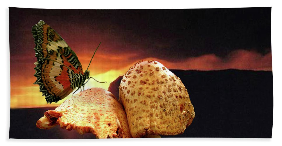 Butterfly Hand Towel featuring the photograph Night Fall by Donna Brown