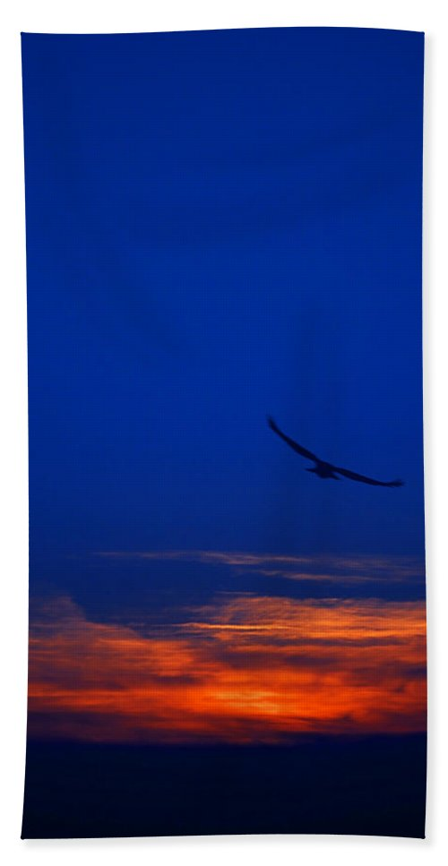 Abstract Hand Towel featuring the photograph Night Hawk by Svetlana Sewell