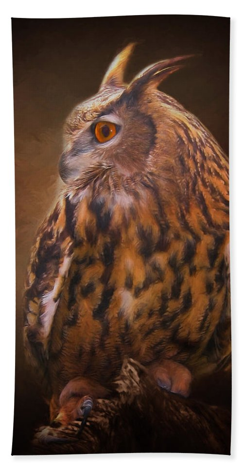 Animals Hand Towel featuring the photograph Night Owl by David and Carol Kelly