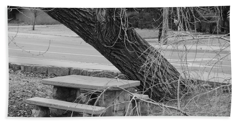 Trees Bath Sheet featuring the photograph No One Sits Here In Black And White by Rob Hans