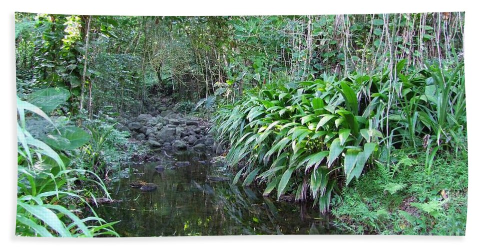 Mary Deal Hand Towel featuring the photograph North Shore Forest Glade by Mary Deal