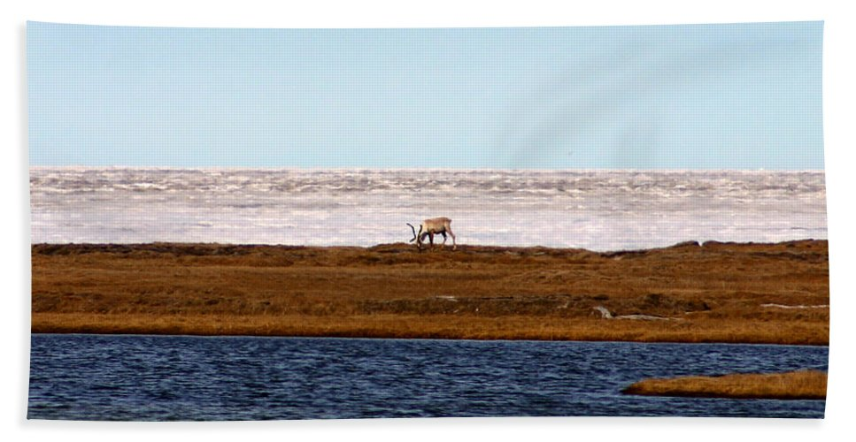 Arctic Bath Sheet featuring the photograph North Slope by Anthony Jones