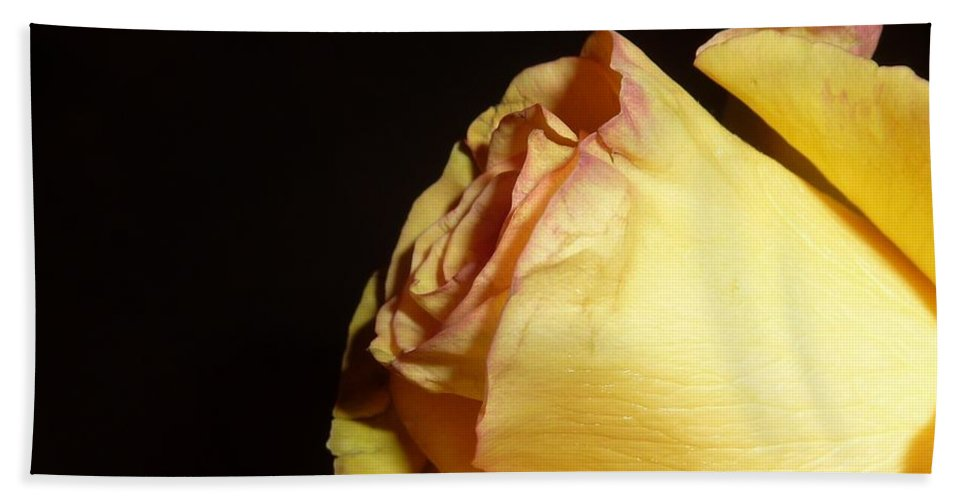Flower Photograph Bath Sheet featuring the photograph Peaceful Bliss by Michele Penn