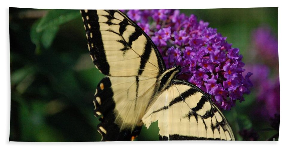 Butterfly Bath Towel featuring the photograph Nothing Is Perfect by Debbi Granruth