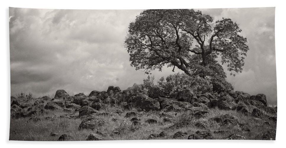 Oak Bath Sheet featuring the photograph Oak In Rock Field by Jim And Emily Bush