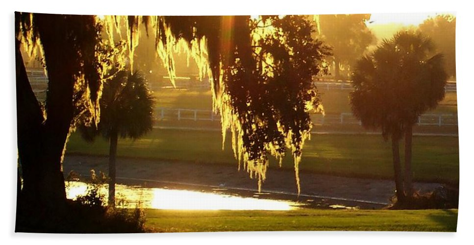 Sunset Hand Towel featuring the photograph Ocala Sunset by Kristen Wesch