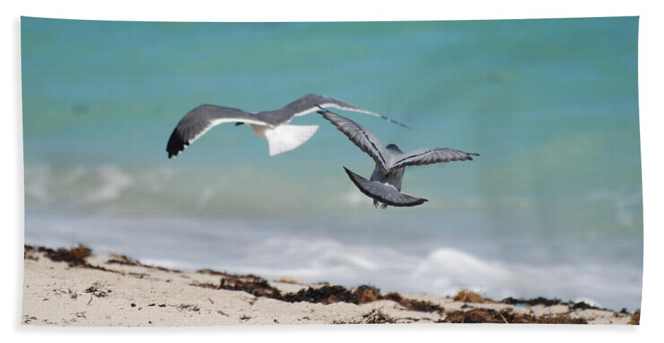 Sea Scape Bath Towel featuring the photograph Ocean Birds by Rob Hans