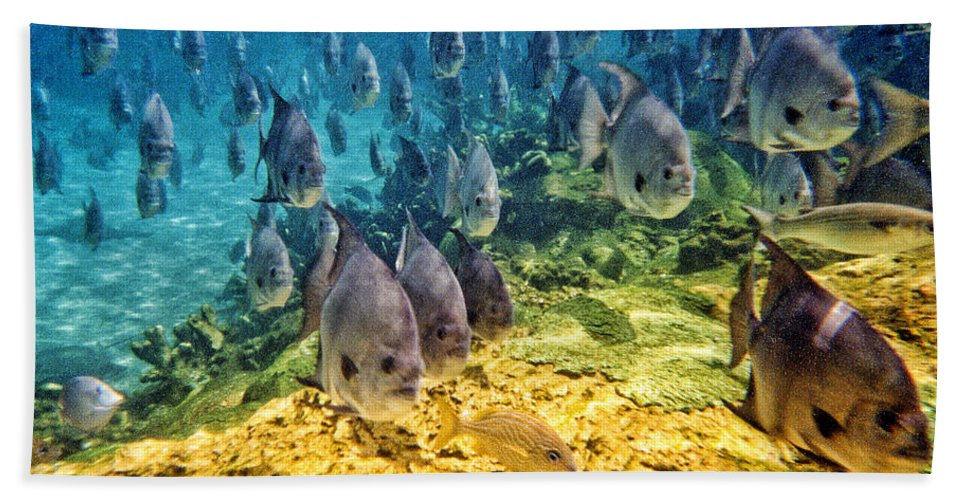Fish Bath Sheet featuring the photograph Oceans Below by Mark Madere