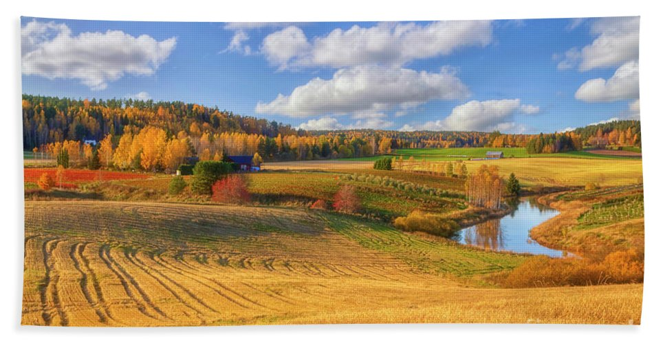 Atmosphere Hand Towel featuring the photograph October Countryside 3 by Veikko Suikkanen