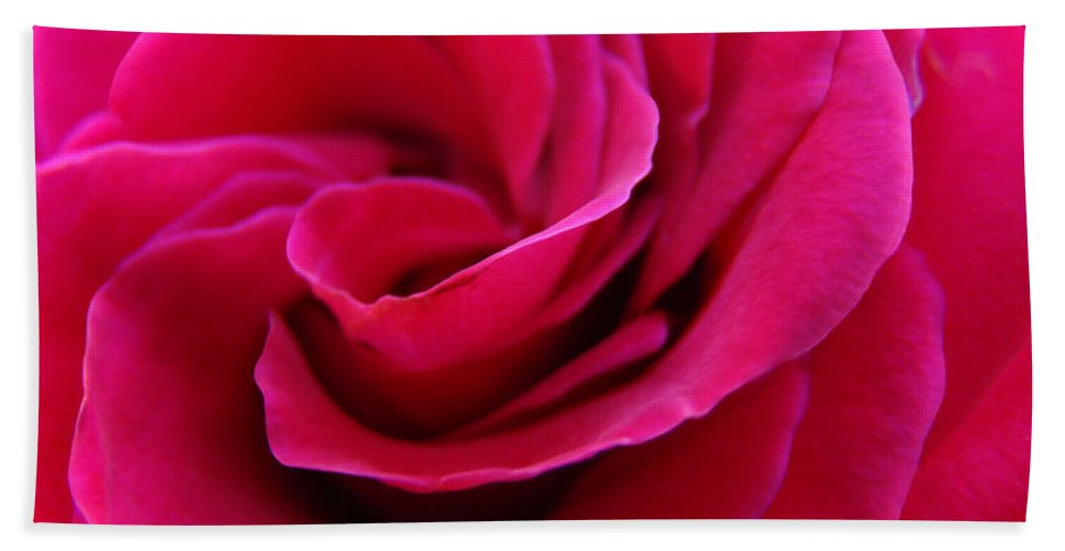 Rose Bath Towel featuring the photograph OFFICE ART ROSE SPIRAL Art Pink Roses Flowers Giclee Prints Baslee Troutman by Patti Baslee
