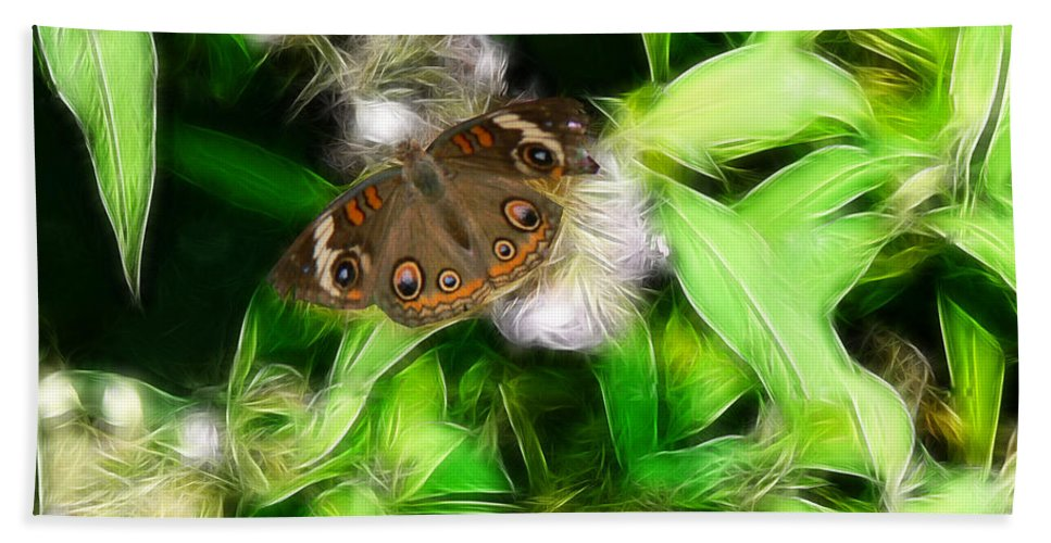 Butterfly Hand Towel featuring the photograph Ohio Buckeye by Ericamaxine Price