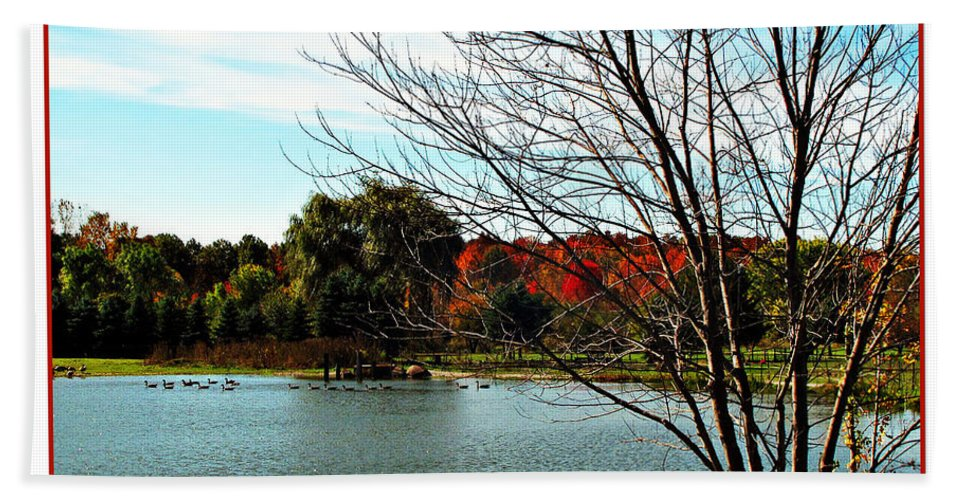 Autumn Hand Towel featuring the photograph Ohio Duck Pond by Joan Minchak