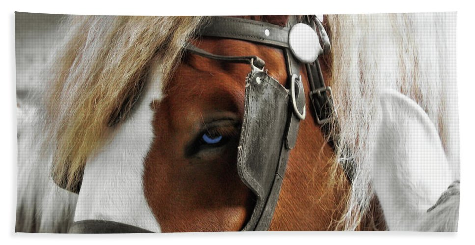 Horse Bath Sheet featuring the photograph Old Blue Eyes Savannah by JAMART Photography