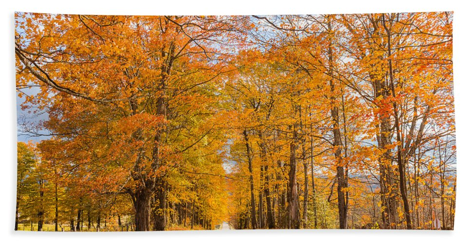 Landscape Hand Towel featuring the photograph Old Coach Road Autumn by Tim Kirchoff