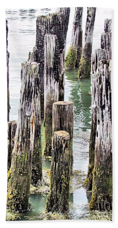Portland Maine Hand Towel featuring the photograph Old Dock Remains by Elizabeth Dow