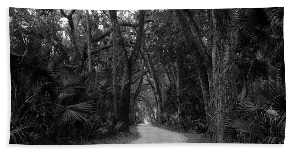 Landscape Bath Sheet featuring the photograph Old Florida by David Lee Thompson