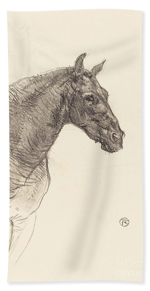 Hand Towel featuring the drawing Old Horse (le Vieux Cheval) by Henri De Toulouse-lautrec