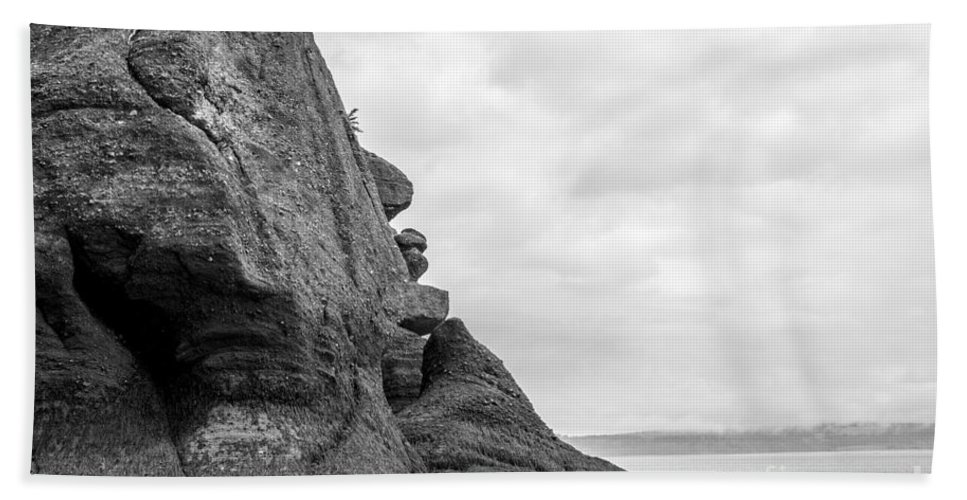 Hopewell Rocks Hand Towel featuring the photograph Old Man And The Sea by Darla Bruno