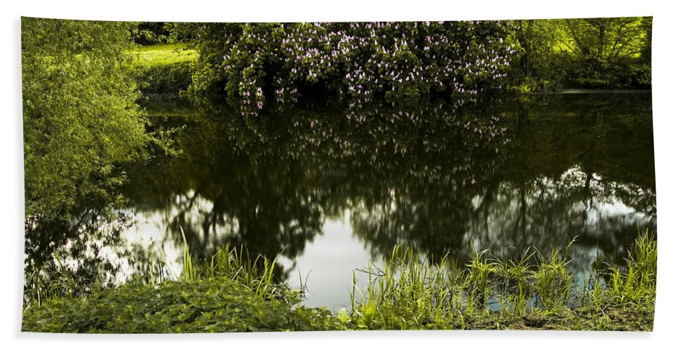 Countryside Bath Sheet featuring the photograph Old Pond by Svetlana Sewell