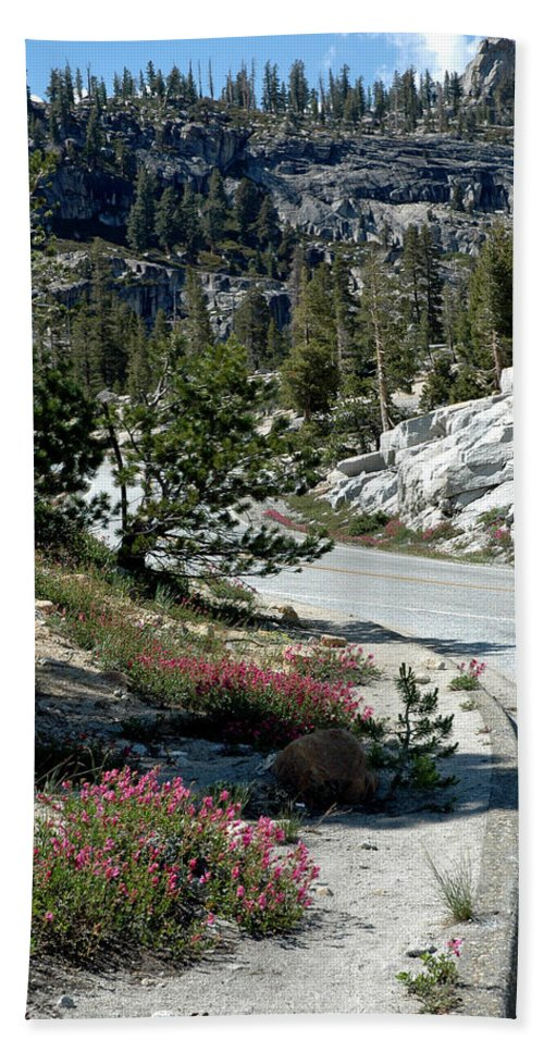 Usa Bath Sheet featuring the photograph Olmsted Down The Road View by LeeAnn McLaneGoetz McLaneGoetzStudioLLCcom