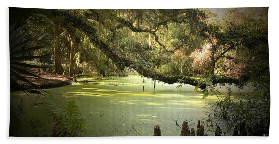 Swamp Hand Towel featuring the photograph On Swamp's Edge by Scott Pellegrin