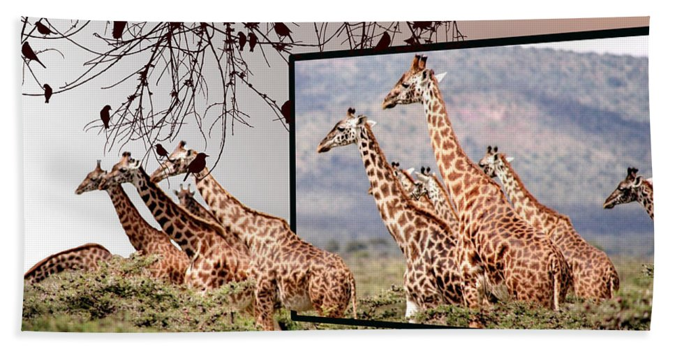 Giraffe Hand Towel featuring the photograph On The Run by Ericamaxine Price
