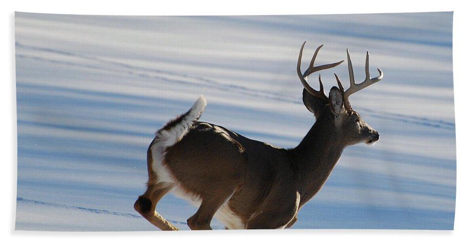Deer Bath Sheet featuring the photograph On The Run by Todd Hostetter