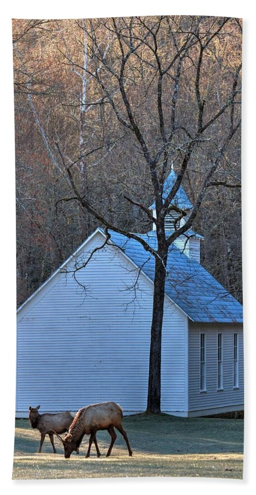Cataloochee Hand Towel featuring the photograph On The Way To Church by Carol Montoya