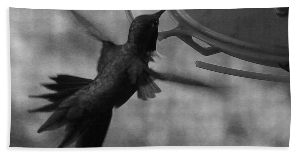 Hummingbird Bath Sheet featuring the photograph On The Wings Of A Hummingbird by Samantha Burrow