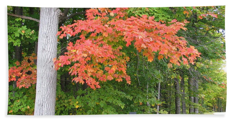 Fall Hand Towel featuring the photograph Onaway by Kelly Mezzapelle