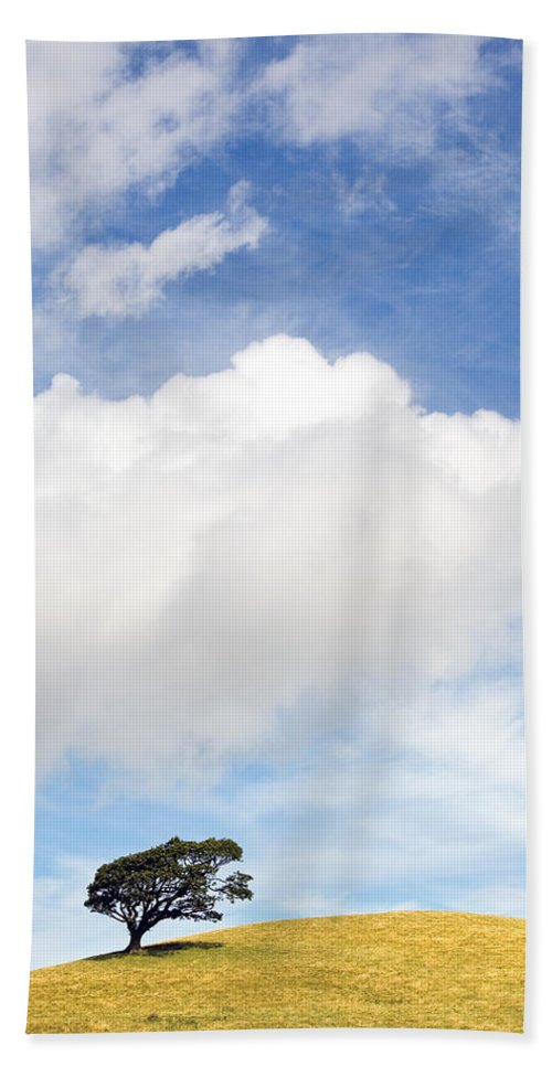 Landscape Hand Towel featuring the photograph One Tree Hill by Mal Bray