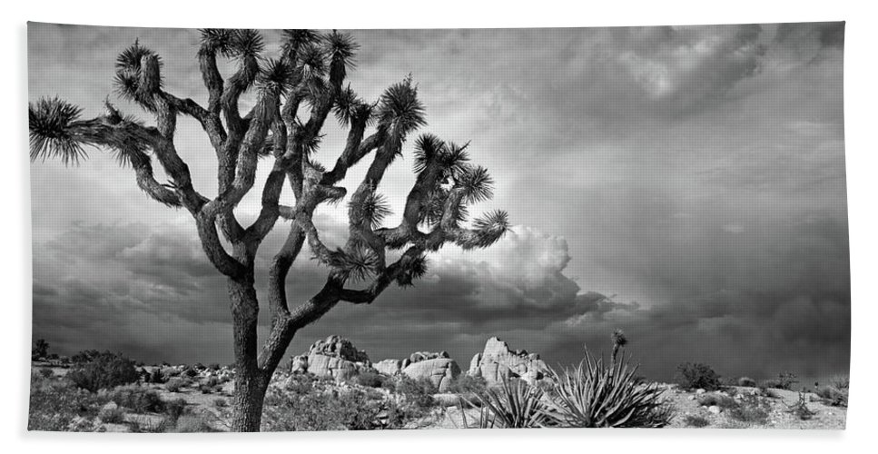 Joshua Tree Bath Sheet featuring the photograph One Tree Hill by Virginia Dickens