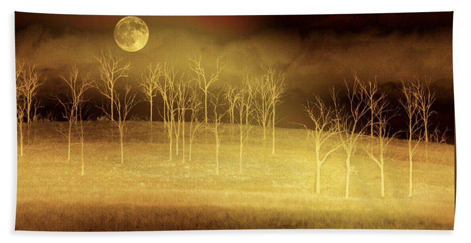 Landscapes Bath Towel featuring the photograph Only At Night by Holly Kempe