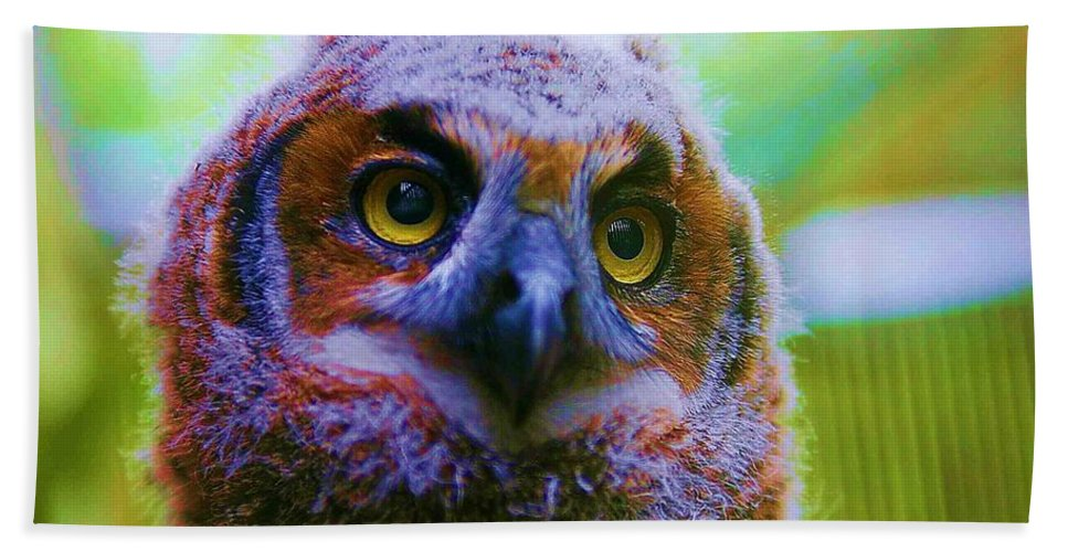 Owl Hand Towel featuring the photograph Opalescent Owl by Nelson Strong