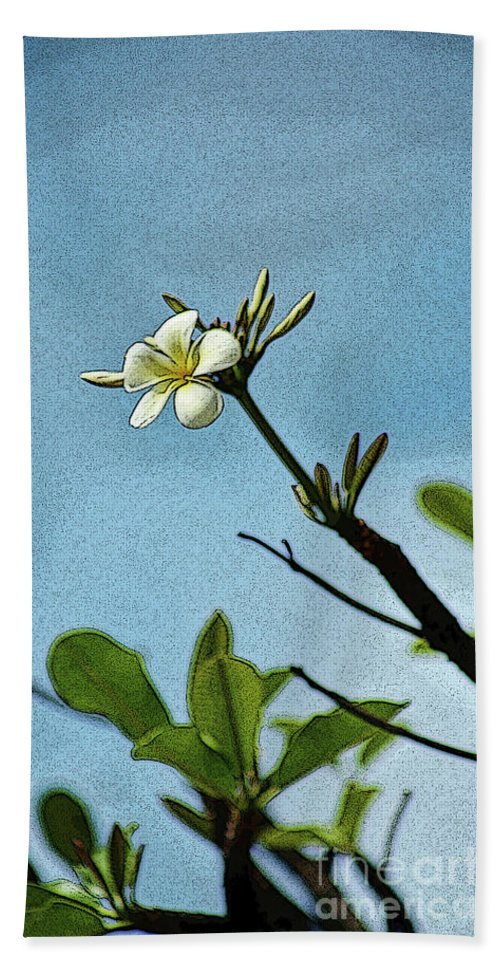 Plumeria Bath Towel featuring the photograph Open To The Sun by Craig Wood