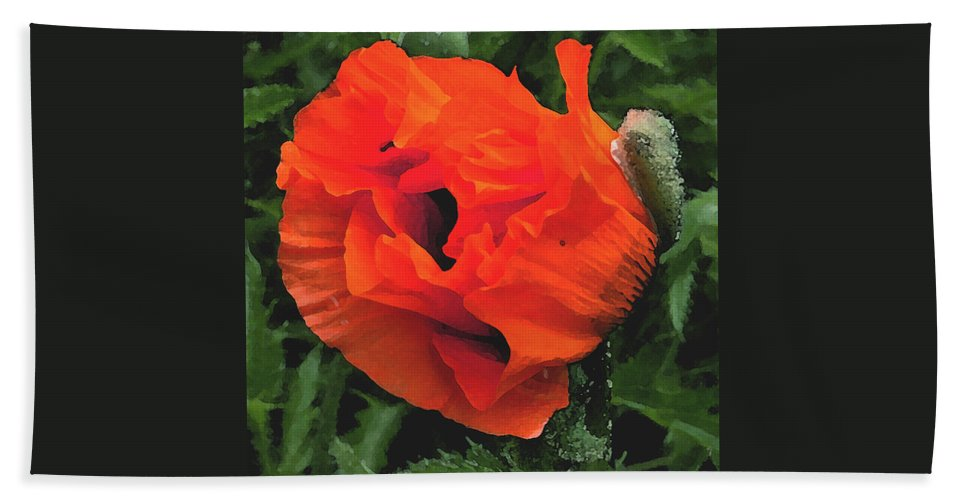 Opium Poppy Hand Towel featuring the photograph Opium by Heather Lennox