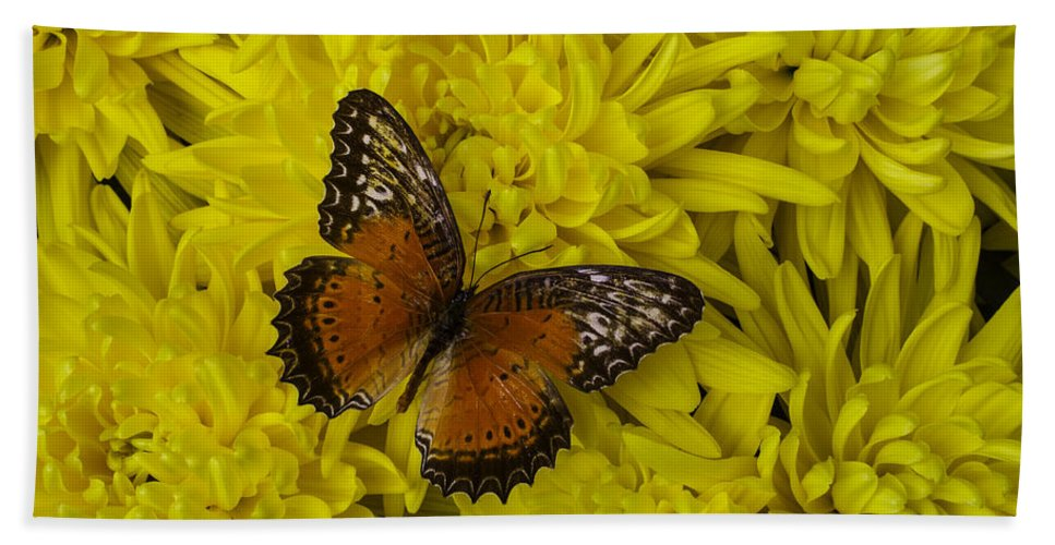Mum Hand Towel featuring the photograph Orange Butterfly On Yellow Mums by Garry Gay