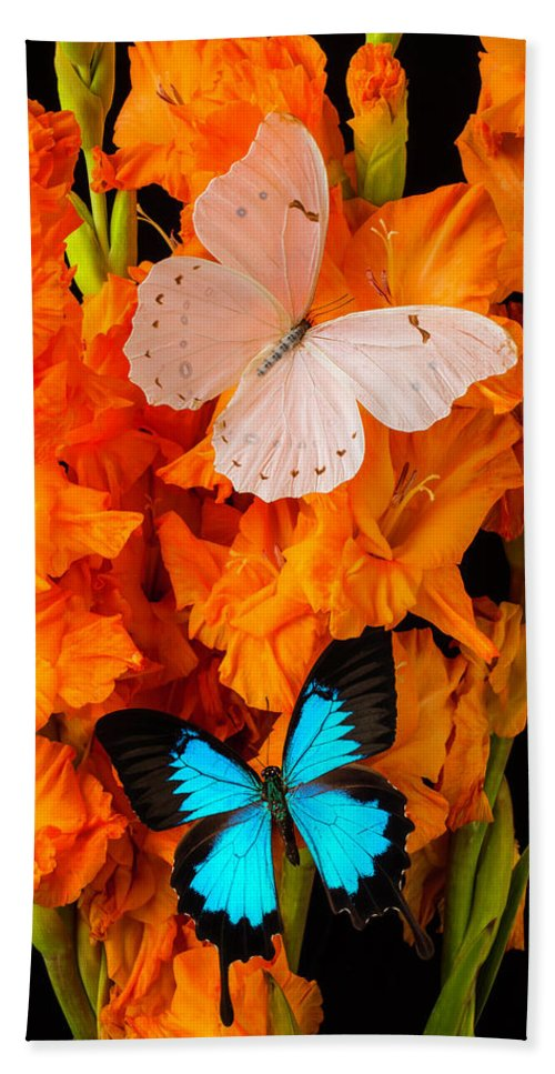Orange Bath Sheet featuring the photograph Orange Glads With Two Butterflies by Garry Gay