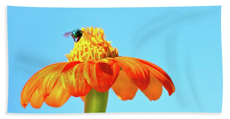 Bee Hand Towel featuring the photograph Orange Pop Flower Cafe by Mark Andrew Thomas